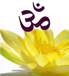 Logo-FFY-2006-solo